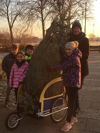 Weihnachtsbaum2019